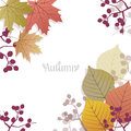 Beautiful seasonal background with autumn leaves and berries space for text file contains clipping mask un cropped Royalty Free Stock Photo