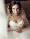 Beautiful sensual bride with dark hair in luxurious lace wedding dress Royalty Free Stock Photo