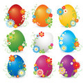 Beautiful set of shining eggs Stock Photos