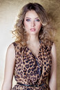 Beautiful sexy girl in leopard dress in bright makeup in the Studio on a gold background Royalty Free Stock Photo