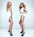 Beautiful sexy twins fashion style photo of Stock Photos