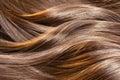 Beautiful shiny hair texture