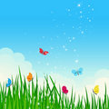 Beautiful shiny summer dreamy meadow. Royalty Free Stock Photo