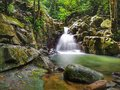Beautiful silky smooth waterfall stream in the rainforest Sabah, Malaysia. Royalty Free Stock Photo