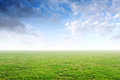 Beautiful simple background with green grass and blue sky Royalty Free Stock Photo