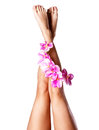 Beautiful slender female legs with flower long beauty treatment concept Stock Photos