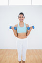 Beautiful slender woman lifting blue dumbbells smiling at camera Stock Photo