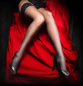 Beautiful slim legs in nylons Royalty Free Stock Photo