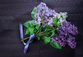 Beautiful small bouquet of lilacs tied with a ribbon.