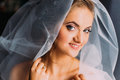 Beautiful smiling blonde bride in make-up and veil close-up Royalty Free Stock Photo