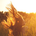 Beautiful smiling woman in a field at sunset. Trendy young girl Royalty Free Stock Photo