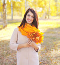 Beautiful smiling young woman with yellow maple leafs in autumn Royalty Free Stock Photo