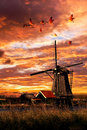 Beautiful smock ground sailer windmill chaotic sunset sky and gease flying over the house keeper farm at the rural area and nearby Stock Photography