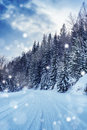 Beautiful snowstorm Royalty Free Stock Photography