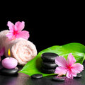 Beautiful spa background of pink hibiscus flowers, green leaf, c