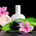 Beautiful spa background of pink hibiscus flowers, leaf, towel,