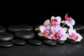 Beautiful spa background of purple orchid phalaenopsis on black Royalty Free Stock Photo