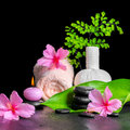 Beautiful spa composition of pink hibiscus flower, leaf fern, th