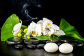 Beautiful spa concept of blooming white orchid flower; phalaenop Royalty Free Stock Photo