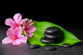 Beautiful spa concept of pink hibiscus flowers, green leaf and s