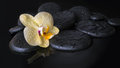 Beautiful spa set of yellow orchid (phalaenopsis), zen stones