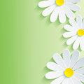 Beautiful spring abstract background d flower ch chamomile vector floral vector illustration Royalty Free Stock Image