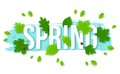 Beautiful Spring Background with Leaves, Lady Bugs