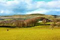 Beautiful Spring landscape,  Scotland Stock Photography