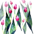 Beautiful spring pink tulips pattern watercolor hand sketch Royalty Free Stock Photo