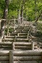 Beautiful Stairs in the woods Royalty Free Stock Photo