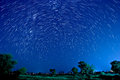 Beautiful star trail image during the night Royalty Free Stock Images