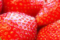 Beautiful strawberries close up Royalty Free Stock Photos