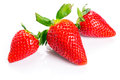 Beautiful strawberries isolated white Stock Image