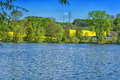 Beautiful summer day at a pond Royalty Free Stock Photo