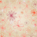 Beautiful summer floral background Royalty Free Stock Photos