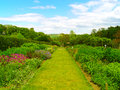 Beautiful summer garden old with a path Royalty Free Stock Photography