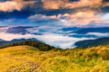Beautiful summer landscape in mountains the sunrise Stock Photography