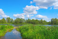 Beautiful summer landscape with river forest and blue sky Royalty Free Stock Images
