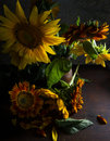 Beautiful sunflowers in vase Royalty Free Stock Photo