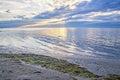 Beautiful sunrise over the sea, the algae on the coast