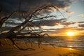 Beautiful Sunset At North Stradbroke Island Australia