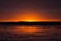 Beautiful sunset a peaceful lake. Royalty Free Stock Photo