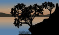 Beautiful sunset the river with silhouette tree Royalty Free Stock Photo