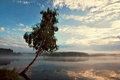 Beautiful Sunset or sunrise and tree in lake Royalty Free Stock Photo
