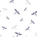 Beautiful swallow on a white background. Watercolor illustration. Spring bird brings love. Handwork. Seamless pattern Royalty Free Stock Photo