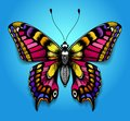 Beautiful tattoo for your chest. Bright colorful butterfly on blue background. Tropical realistic Machaon butterfly. Royalty Free Stock Photo