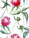 Beautiful tender gentle wonderful lovely cute spring floral herbal peonies with green leaves pattern watercolor hand sketch