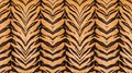 Beautiful tiger fur. Royalty Free Stock Photo