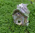 Beautiful tiny fairy cottage in clover field