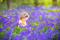 Beautiful toddler girl in bluebell flowers in spring forest Royalty Free Stock Photo